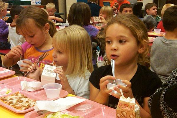 Организация питания в детских общеобразовательных учреждениях