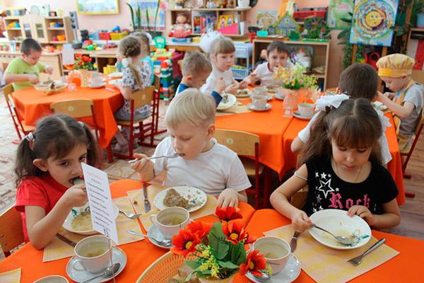 Организация дошкольного питания