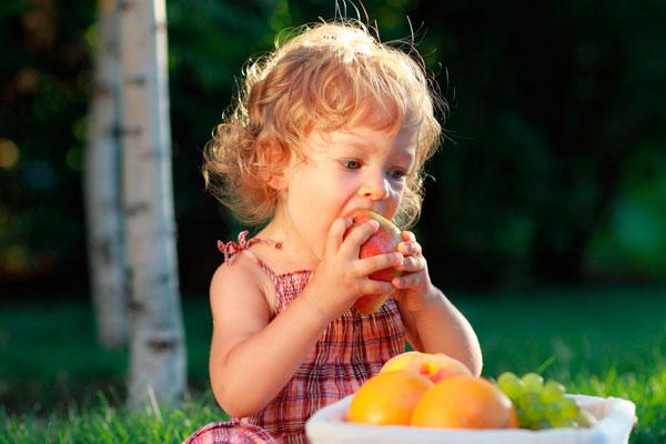 организация детского питания лагерь