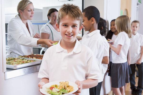 организация горячего питания школьников