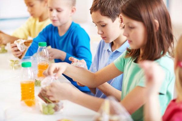 организация общественного питания образовательных учреждений